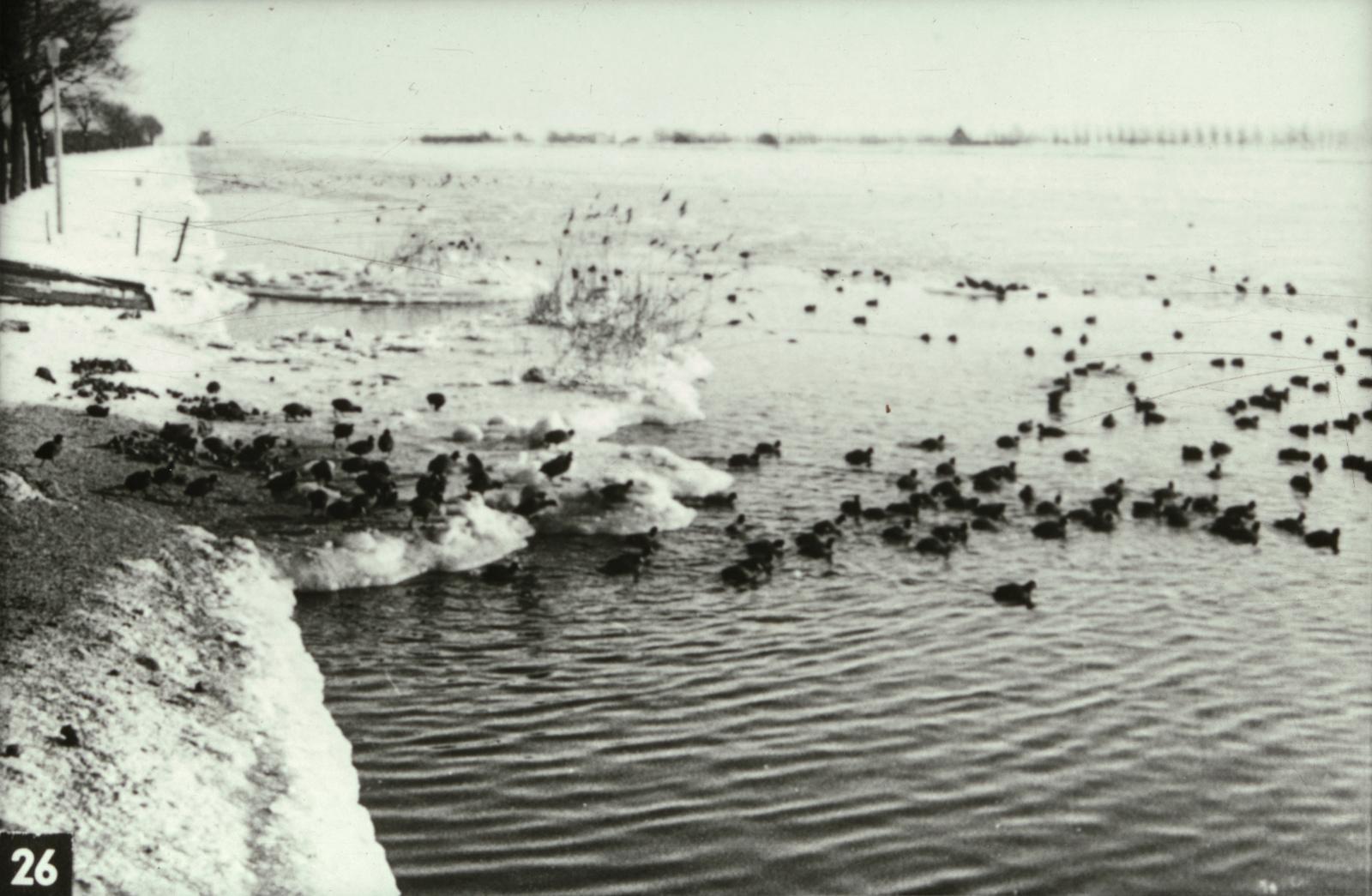 Strenge winter van 1963