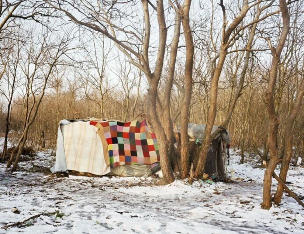 Ville de Calais, Shelter
