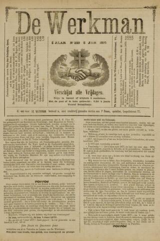 De Werkman 1877