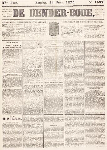 De Denderbode 1873-06-15