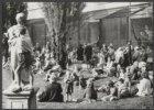 Veel publiek in de dierentuin Artis op een zonnige septemberdag