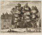 Het Kleine Karthuizers-Hof, omtrent den jaare 1630