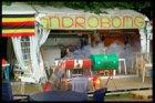 Bijlmerpark met het Kwakoe Festival Amsterdam