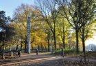 Het Frederiksplein in herfsttooi in zuidelijke richting gezien met het monument …