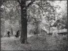 Herfst in het Vondelpark bij Brug 453, vaste smeedijzeren brug bij het rosarium,…
