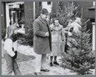 Kerstbomenverkoopster Sonja Pieterse