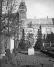 De tuin van het Rijkmuseum, Stadhouderskade 42. Gezien naar de achtergevel van h…