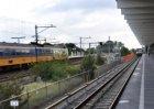 """Kunst op metrostation Diemen Zuid. Kunstwerk """"Wild Gardening"""" van de kunstenaar …"""