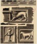 Gevelstenen in de Eerste Batavierdwarsstraat 2: een leeuw, een vos en een naakte…