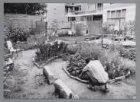 Tuin voor en door buurtbewoners uit de omgeving van de Kinkerstraat
