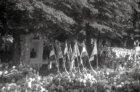 Feestelijke onthulling van een monument voor Koningin Wilhelmina bij de ingang v…