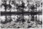 Gein. Foto voor de tentoonstelling 'Mondriaan aan de Amstel' in het Gemeentearch…