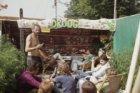 Lowlands Weed Company op woonboot De Witte Raaf in de Nieuwevaart