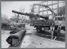 Stormschade in de stad: het verwijderen van omgewaaide bomen in de Beethovenstra…