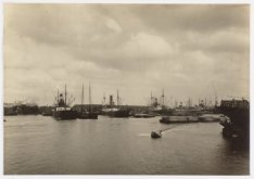 Houthaven