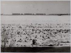 Pieter Calandlaan nabij de Ringspoordijk in wintertooi