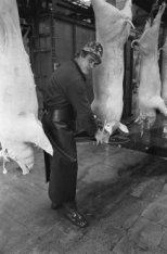 Slachter aan het werk met het slachten van varkens in het abattoir, Veelaan 49-5…