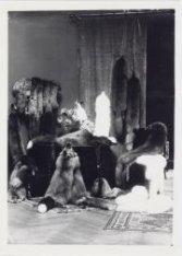 Bontmode 1920 bij Hirsch & Cie, Leidseplein