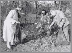 Start van de Groenbrigade in Buitenveldert. Ouderen verzamelen zwerfvuil in een …