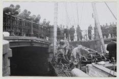 Duiker bij brug over Prinsengracht/Reguliersgracht