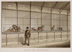 Galerij der roofdieren