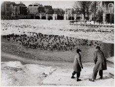 Een wak met vogels in de Amstel gezien vanaf de Weesperzijde hoek Singelgracht b…