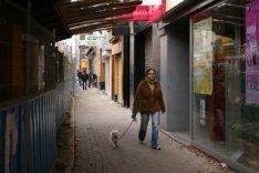 Tijdelijk versmald en gedeeltelijk overbouwd trottoir in de Ferdinand Bolstraat …