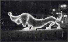 Een verlichte hond op het Kleine-Gartmanplantsoen gezien naar het Hirsch Gebouw