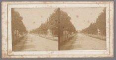 Plantage Middenlaan gezien naar de brug over de Plantage Muidergracht