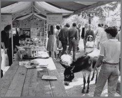 Uitmarkt 1981 op het Museumplein. Stand van theater De Stalhouderij met ezel als…