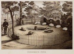 Zeehonden-perk