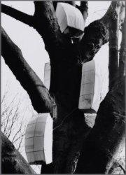 Vondelpark. Geheimzinnige kastjes in een boom in de omgeving van het Vondelmonum…
