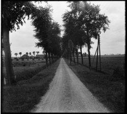 Lutkemeerweg