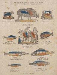 Hier vindt ge een negental van dieren, groot en klein die, uitgezonderd één, voo…