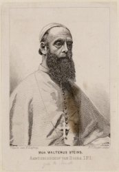 Walterus Steins, Aartsbisschop van Busra (Irak)