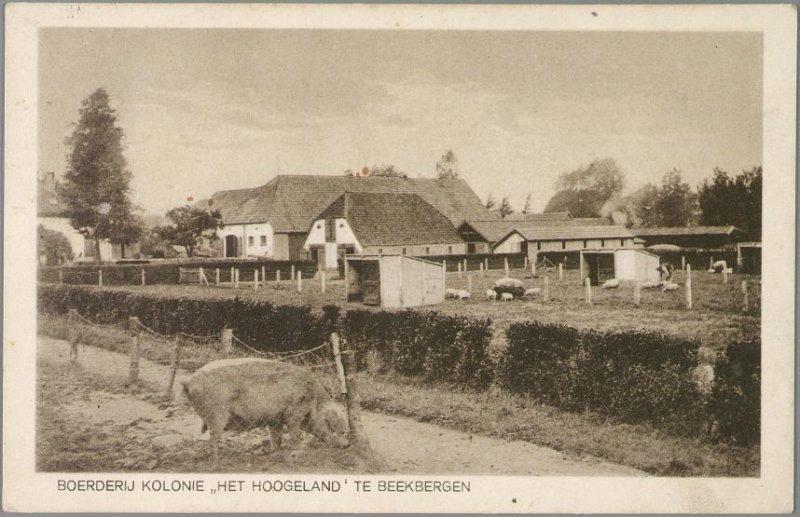 Hoogeland, Het