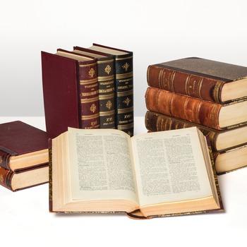 Woordenboek der Nederlandsche taal