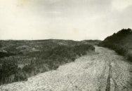 Duinweg met duinen bij 'Puik en Duin
