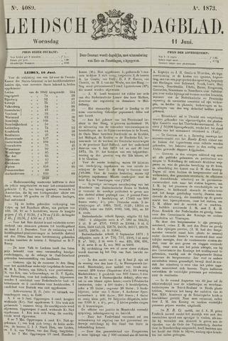 Leidsch Dagblad 1873-06-11