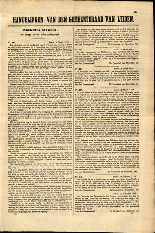 Handelingen van de Raad 1873-03-06