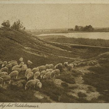 Hunnenschans bij het Uddelermeer