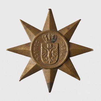 medaille van koper, stervormig, Comité Wandeltocht Tiel - Betuwe, 1938,  werktitel