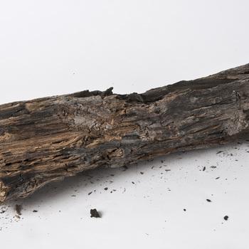 Dukdalf van hout, afkomstig uit het opgravingsgebied van De Tol te Tiel, 800-1100