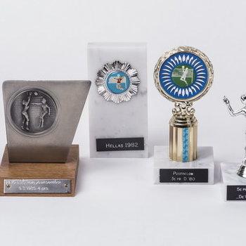 """Sportprijs van  handbal/volleybalvereniging """"De Batauwe"""" te Tiel,  1980-1990"""