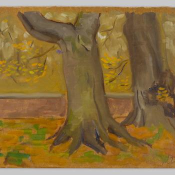 Bomen op het voorplein van kasteel Biljoen