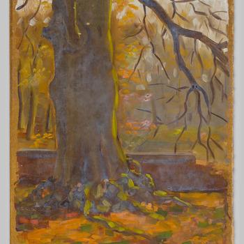 Oude boomstam bij kasteel Biljoen