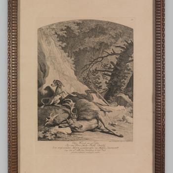 Een hert, geschoten door de landgraaf van Hessen Darmstatt