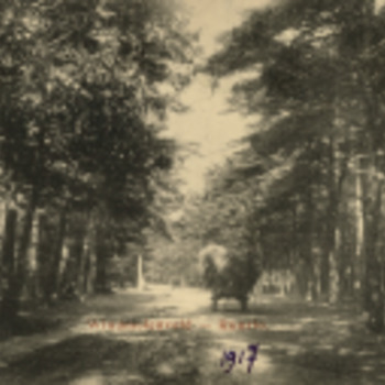 Collectie Gelderland foto
