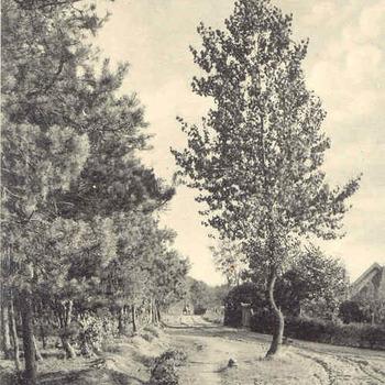 Bennekom - Papenpad