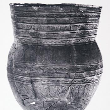 Lunteren - Veluwse klokbeker gevonden tijdens opgravingen